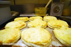 A pan of biscuits fresh out of the oven at Biscuit Express on June 1, 2012. (André Gallant/Staff)