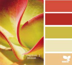 preciosa idea, sacar colores de tus plantas favoritas, me lo apunto para algún proyecto personal