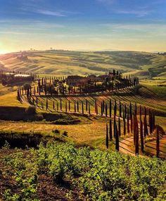 Asciano, Siena, Toscana