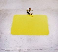 Wolfgang Laib, Yellow Square Laib's squares of hazelnut pollen are absolutely stunning. The saturation of color seems impossible in anything...