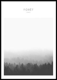 Posters with nature picture, forest, in black and white. Black and white photo art. Photo of forest. www.desenio.co.uk