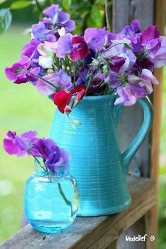 Selecting Plants for Container Gardening Occasionally, landscaping your home can be difficult, but most of the time it appears harder than it actually is. Sweet Pea Flowers, Cut Flowers, Fresh Flowers, Beautiful Flowers, Vintage Gardening, Container Plants, My Flower, Pansies, Planting Flowers