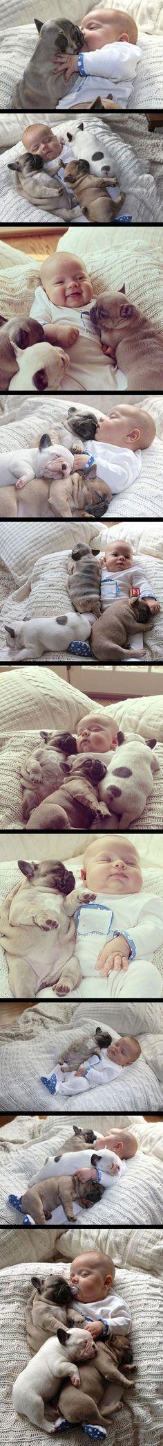 baby with more babies (scheduled via http://www.tailwindapp.com?utm_source=pinterest&utm_medium=twpin&utm_content=post16018036&utm_campaign=scheduler_attribution)