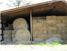 What You Need To Know About Horse Hay Horse Shelter, Horse Stables, Horse Barns, Horse Hay, Horse Feed, Hay Feeder For Horses, Pallet Barn, Farm Layout, Goat Barn