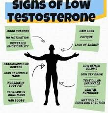 Quickly boost your sex drive, libido and performance with these testosterone boosters. If you are looking for some help in the bedroom then these 5 supplements are the best ones to consider. Top Test Boosters for Libido and Sex Performance 2018 Testosterone Replacement Therapy, Testosterone Therapy, Testosterone Booster, Testosterone Levels, Testosterone Production, Signs Of Low Testosterone, Natural Testosterone, Increase Testosterone, Men Health