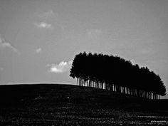 © Giulia Cerantola