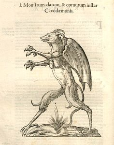 History Of Monsters Woodcut By AldrovandiThis Is Absolutely Wonderful Such Beautiful Attention To Detail