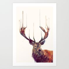 Red Deer // Stag Art Print by Amy Hamilton | Society6
