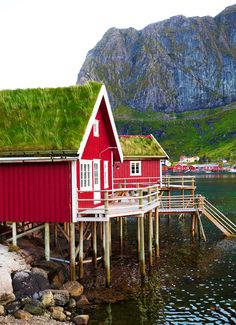 Reine travel | Norway - Lonely Planet Fish Hut, Lofoten, Lonely Planet, Sea Dragon, Norway Travel, Planets, Places To Visit, Restoration, House Styles