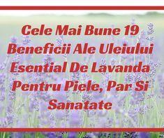 Cele Mai Bune 19 Beneficii Ale Uleiului Esential De Lavanda Pentru Piele, Par Si Sanatate | VIVASANSHOP
