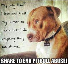 Unconditional love.... they do anything for their owners and there are those that take advantage of them for their sick disgusting inhumane abuse and dog fighting. I love my pits!