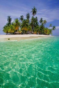 Beautiful Starfish Beach, Bocas Del Toro, Panama .