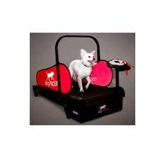 Small Dog Treadmill|Minipacer Small Dog Treadmill - Mighty Mite Dog Gear