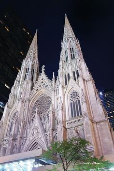 New York City Saint Patrick Cathedral NYC