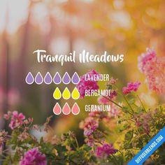 Blend Recipe: 6 drops Lavender, 3 drops Bergamot, 3 drops Geranium