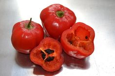 ROCOTO+CHILI+PEPPER++10++seeds+-+FRESH+(Capsicum+pubescens)