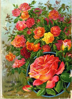 Vintage and antique Seed Catalogs from Smithsonian Institution Libraries