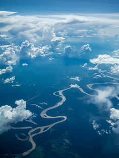 Paisaje  Amazona (Perú, Colombia,Brasil)