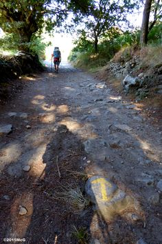 Road to Portomarin #Camino 2015 August McG - day 32