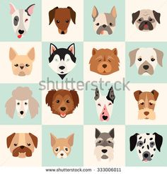 Dogs head icon set,vector flat illustrations. Popular dogs breeds, pattern…