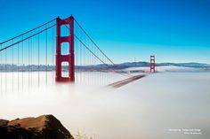 Morning Fog - Golden Gate Bridge by David Yu Places Around The World, Around The Worlds, Baie De San Francisco, San Francisco Vacation, Destinations, World Best Photos, Golden Gate Bridge, Beautiful Landscapes, Places To See