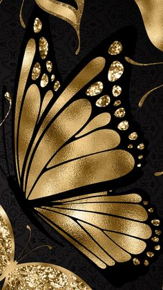 Black and Gold I Butterfly Wallpaper Butterfly Kisses, Butterfly Flowers, Beautiful Butterflies, Gold Wallpaper, Iphone Wallpaper, Butterfly Wallpaper Iphone, Cellphone Wallpaper, Screen Wallpaper, Wallpaper Backgrounds