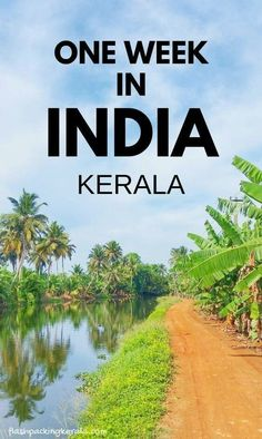 kerala india travel destinations in south asia. places to visit in india. things to do. backpacking south asia travel tips. mumbai to goa to kerala Kerala Travel, India Travel Guide, Asia Travel, Cool Places To Visit, Places To Travel, Travel Destinations, Travel Tips, Travel Ideas, Travel Hacks
