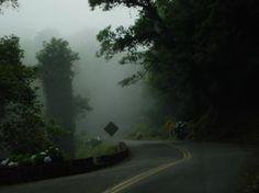 Estrada da Graciosa. Paraná - BRASIL
