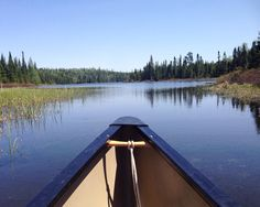 // row row row your boat . .  canoeing through the boundary waters #bwcaw #minnesota #summertrip #nature #lakes #peaceful #canoeing #outdoors #adventure #onlyinmn #liveauthentic #wild by calsbrophoto