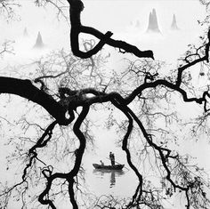 POESIE SULL'ALBERO: Nei boschi dove molti fiumi scorrono (Lawrence Fer...