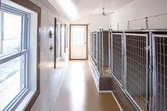 Custom Dog Kennel, Dog Kennels For Sale, Luxury Dog House, Dog Friendly Backyard, Shelter Dogs, Dog Friends, Commercial, Pomeranians, Dog Stuff