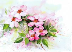 Dog Roses - watercolour by Julie Horner
