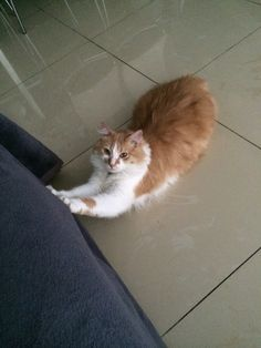 Stretching...