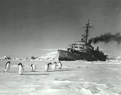 USS Staten Island (AGB-5). Temporarily stalled by pressure ice in the Ross Sea, during Antarctic operations, 9 December 1958. Note Adelie penguins in the foreground. NHHC Photograph Collection, NH 99297.
