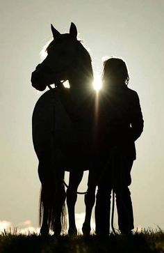 Bond between girl and horse. Lovely horse photography at sunset.