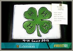 4-Hers don't wait to wear green just on St. Patrick's Day, they don their favorite color year-round to proudly display the official 4-H emblem, a green four-leaf clover. Research has shown that young people who participate in 4-H experience greater educational achievement and community involvement. We have the information you need to get your child involved. http://extension.missouri.edu/muext101/066.aspx #MUEXT101