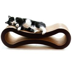So cute! #modern #kitty #lounge