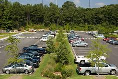 Parking Lot Bioswale