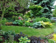 Three Dogs in a Garden: A Garden Over Twenty Years in the Making (Part 1)