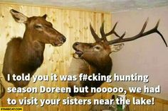 I told you it was hunting season but no we had to visit your sisters near the lake
