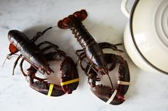 How to Cook a Lobster