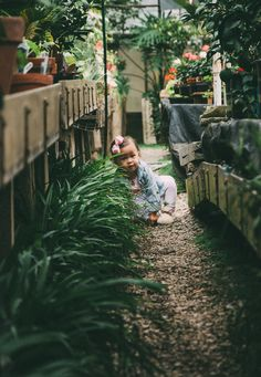 Greenhouse Children's Session: Kentucky  Elizabeth Withers Photography Outdoor Furniture, Outdoor Decor, Kentucky, Photography, Photograph, Fotografie, Photoshoot, Backyard Furniture, Lawn Furniture