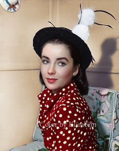 Elizabeth Taylor, 1948 Jun Classic Hollywood Stars Visit the post for more. Hollywood Icons, Hollywood Actor, Hollywood Stars, Hollywood Actresses, Classic Hollywood, Old Hollywood, Hollywood Divas, Elizabeth Taylor, Marlene Dietrich