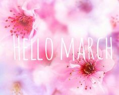 Hello March....please hurry Spring...we NEED you!!!!