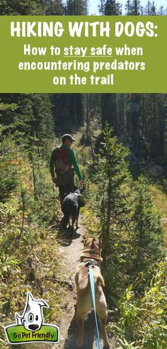 Hiking Safety - Would you know what to do if you encountered predators on the…