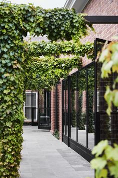 Armadale II by Studio Tate transforms a grand turn-of-the-century house into a family home that expertly balances character with elegance and respect. Garden Care, Outdoor Spaces, Outdoor Living, Glass Walkway, Maine House, The Locals, Architecture Design, Garden Design, 1