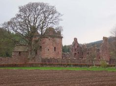 Edzell castle - sur la route d'Aberdeen