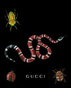 Gucci art, snake, insects
