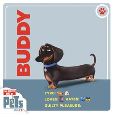 Meet Buddy the wiener dog. He's the first to arrive, the last to leave. | The Secret Life of Pets | In Theaters July 8