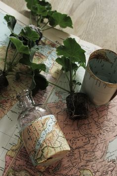 Make your own little pot out of some kind of paper. I used old maps... Look into my blog for more info and pictures.